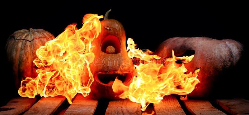 Due molto spaventosi e zucche pericolose di Halloween, con un terribile immagine stock libera da diritti