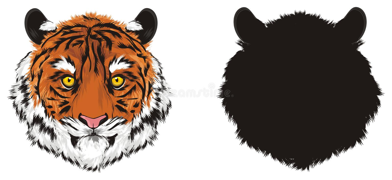 Due musi delle tigri illustrazione di stock