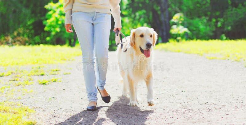 Due?o de la mujer que camina con su perro del golden retriever en el correo en verano imagen de archivo
