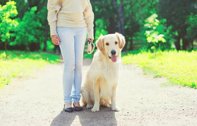 Due?o de la mujer que camina con su perro del golden retriever en el correo en verano imagen de archivo libre de regalías