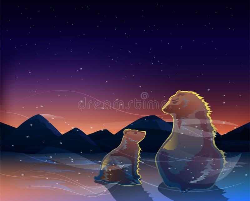 Due orsi che guardano l'alba nel vettore freddo del deserto fotografia stock