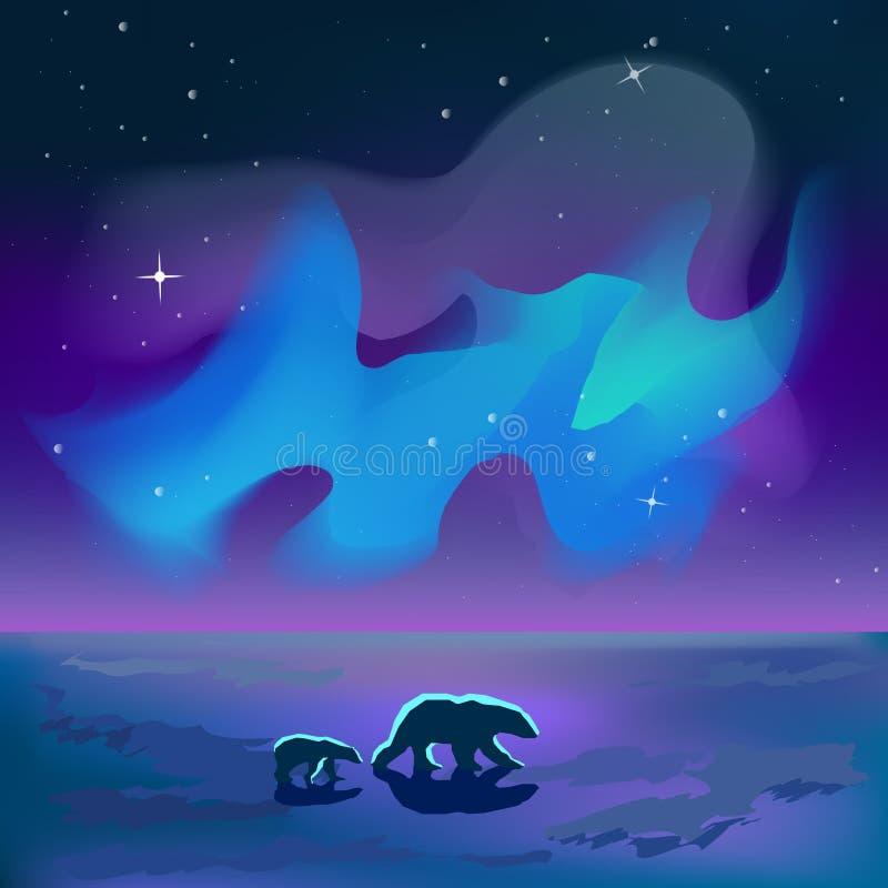 Due orsi vanno nell'ambito dell'aurora boreale al vettore di notte fotografia stock libera da diritti