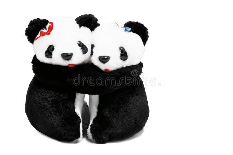Due panda riguarda un fondo bianco fotografia stock libera da diritti