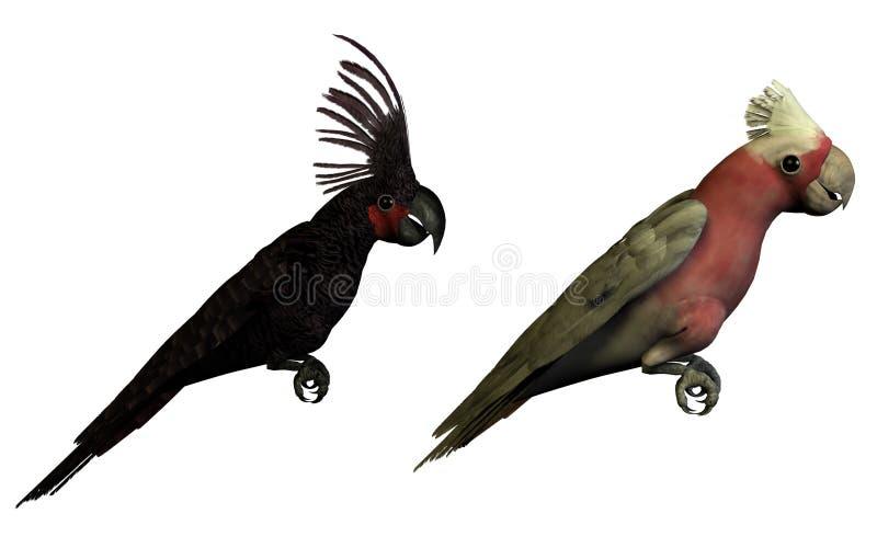 Due pappagalli 3D isolati illustrazione di stock