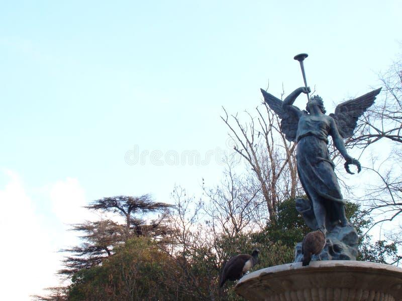 Due pavoni ai piedi di una statua fotografia stock libera da diritti