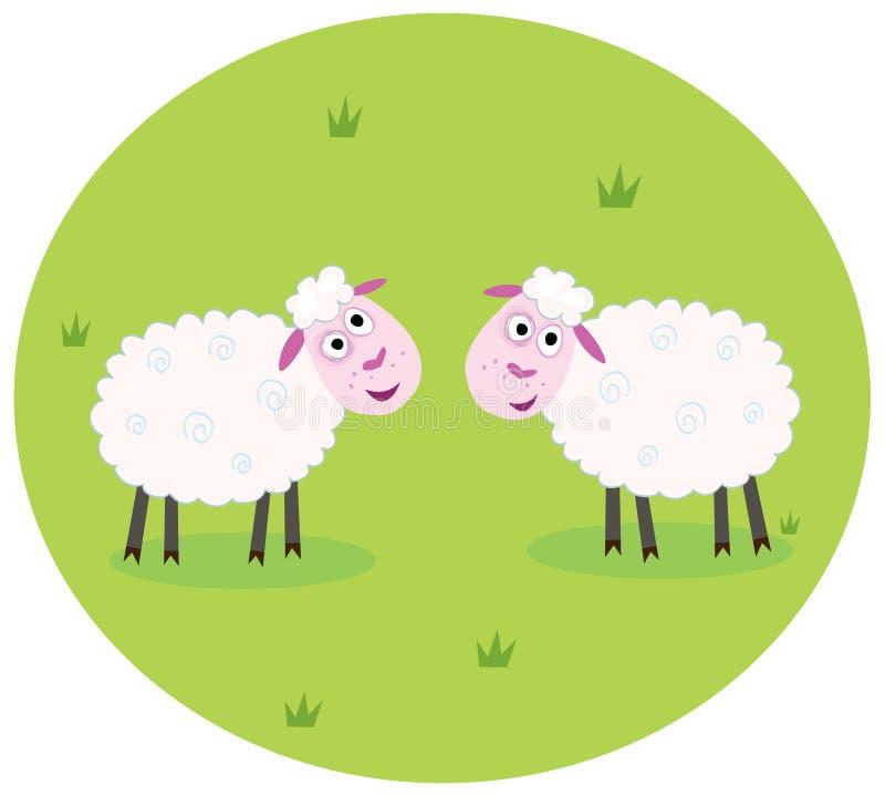 Due pecore bianche illustrazione di stock
