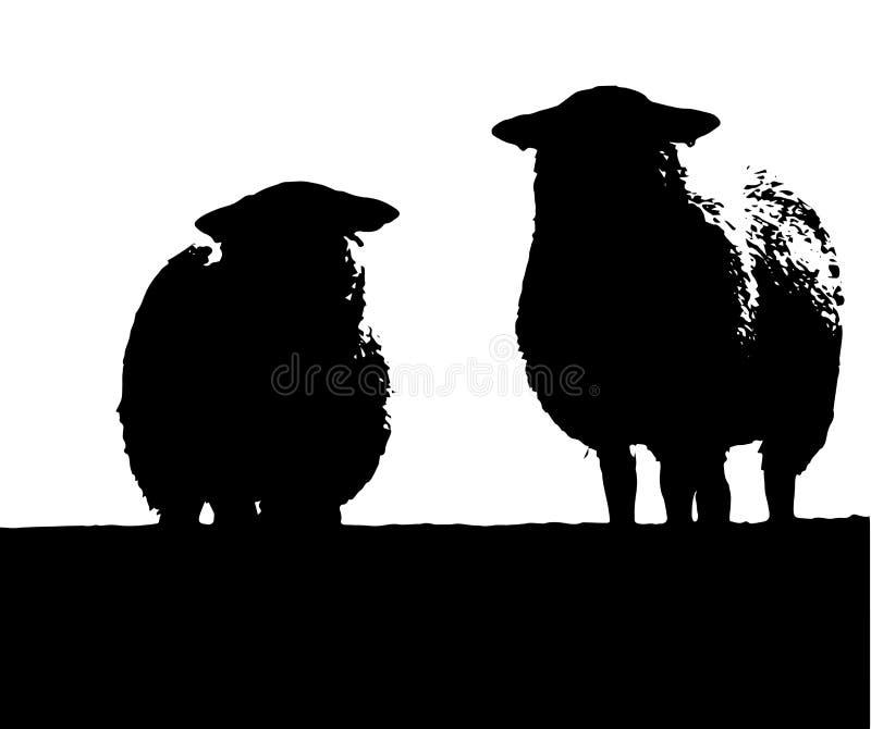 Due pecore di Lingua gallese illustrazione di stock