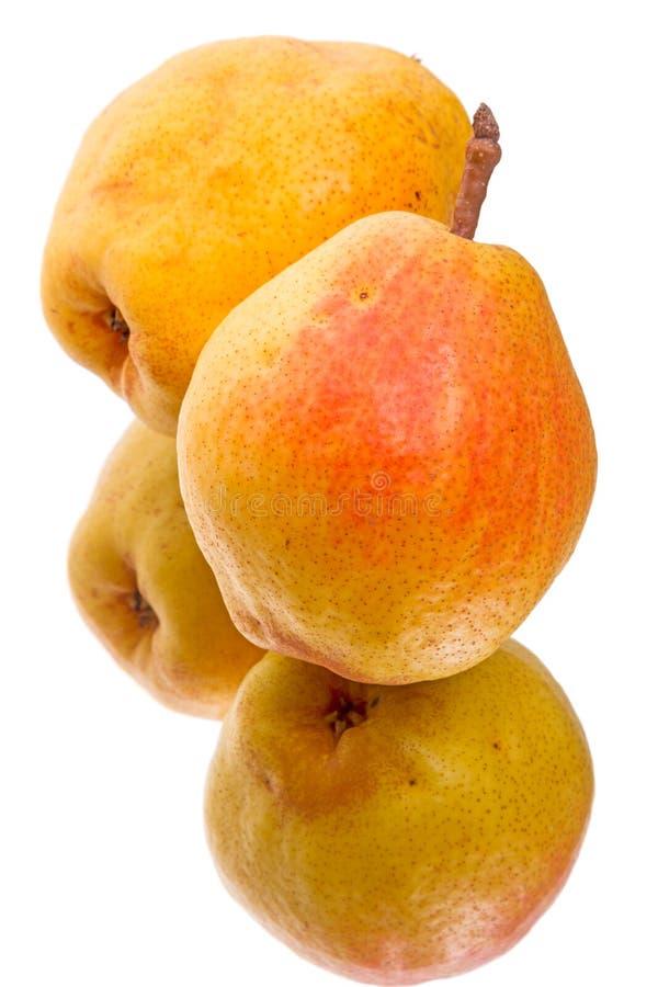 Due pere per salute una coppia fotografie stock