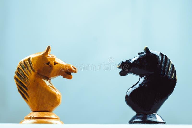 Due pezzi degli scacchi dei cavalli fotografia stock
