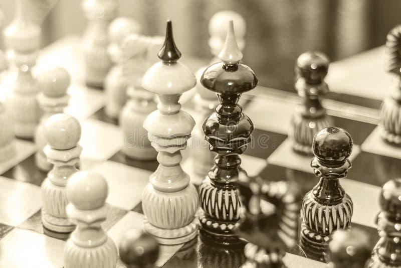 Due pezzi degli scacchi di re su un bordo di legno, circondati da altri pezzi degli scacchi Il concetto di amore dello stesso ses fotografia stock