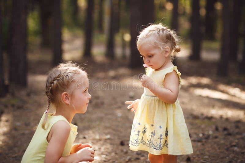 Due piccole sorelle sveglie in vestiti gialli Giorno di estate soleggiato caldo fotografie stock