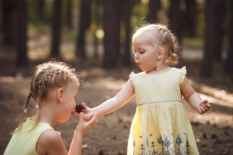 Due piccole sorelle sveglie in vestiti gialli Giorno di estate soleggiato caldo fotografia stock