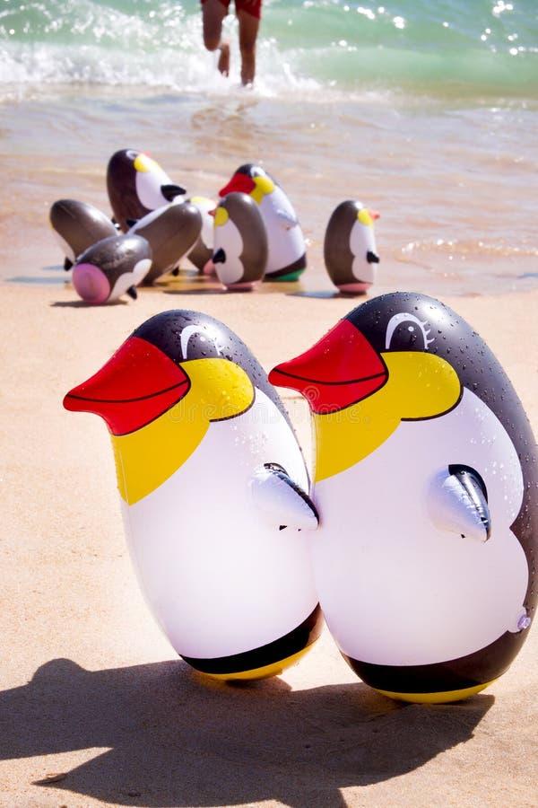 Due pinguini di esplosione su una spiaggia sabbiosa con i peguins di un'esplosione del gruppo dietro fotografie stock libere da diritti