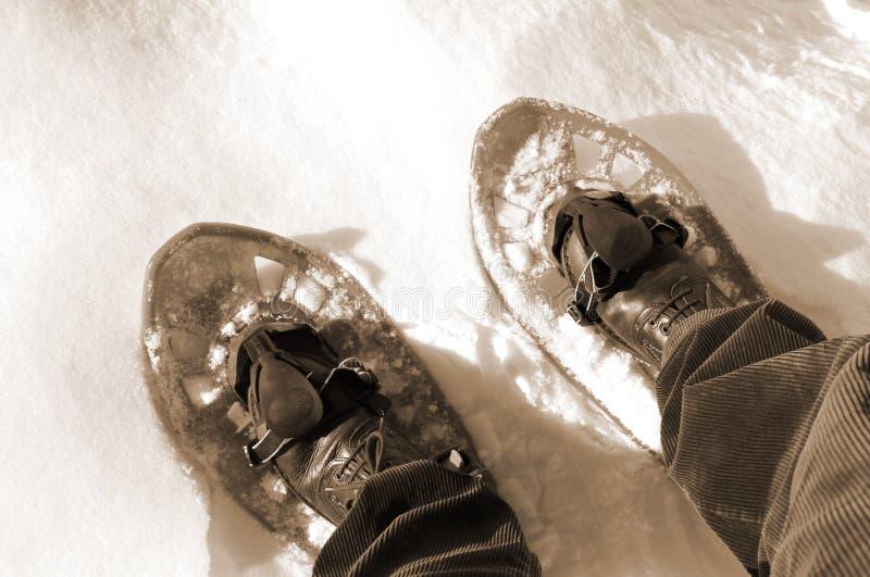 Due racchette da neve su effetto di seppia della neve fotografie stock libere da diritti