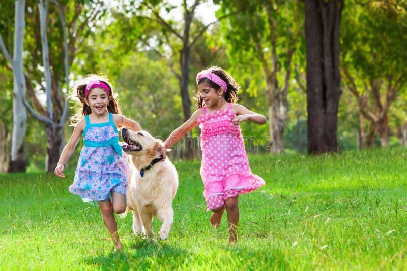 Due ragazze che corrono con un golden retriever sull'erba immagini stock libere da diritti