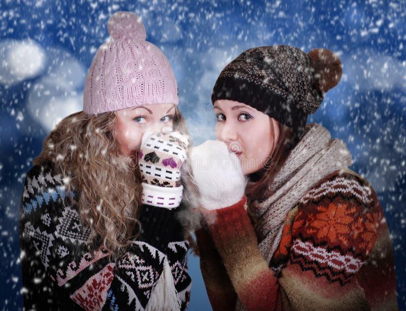 Due ragazze congelate di bellezza fotografia stock libera da diritti
