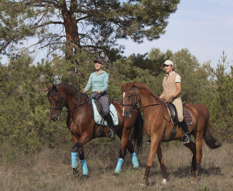 Due ragazze sorridenti guida a cavallo. fotografie stock