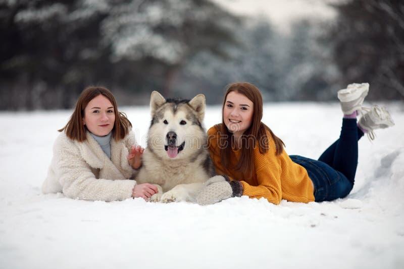 Due ragazze stanno trovando in neve accanto ad un Malamute d'Alasca del cane ed abbraccia il suo immagini stock libere da diritti