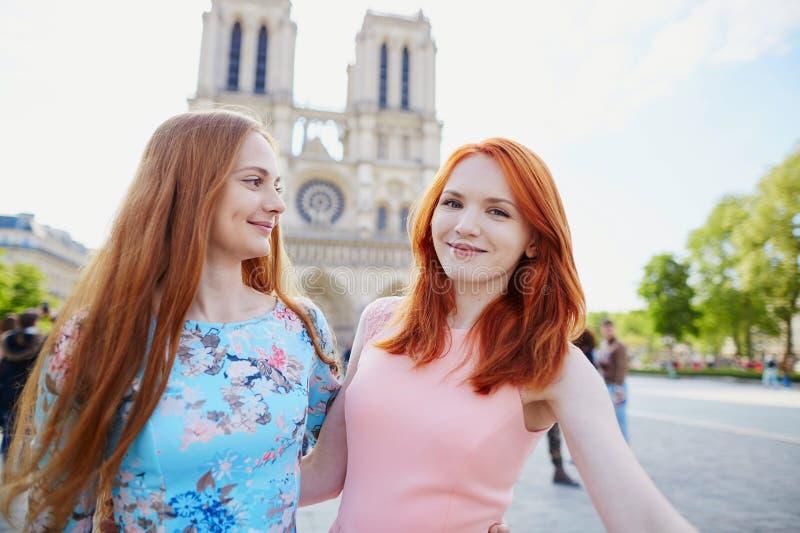 Due ragazze vicino a Notre-Dame a Parigi fotografia stock libera da diritti