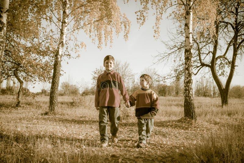 Due ragazzi che camminano insieme sul parco di autunno immagine stock libera da diritti