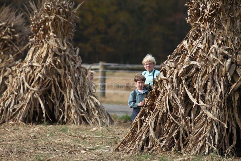 Due ragazzi di Amish che giocano dalle scosse di cereale fotografie stock libere da diritti