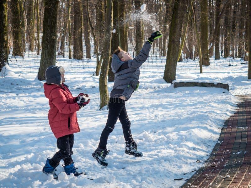 Due ragazzini gettano la neve su e si divertono nel parco dell'inverno immagine stock libera da diritti