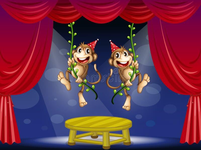Due Scimmie Che Eseguono Nella Fase Fotografia Stock Libera da Diritti