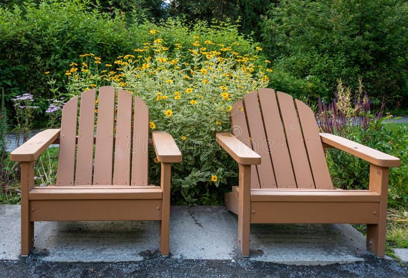 Due sedie marroni di legno di Adirondack in un giardino con i fiori gialli e cespugli verdi nel fondo fotografie stock
