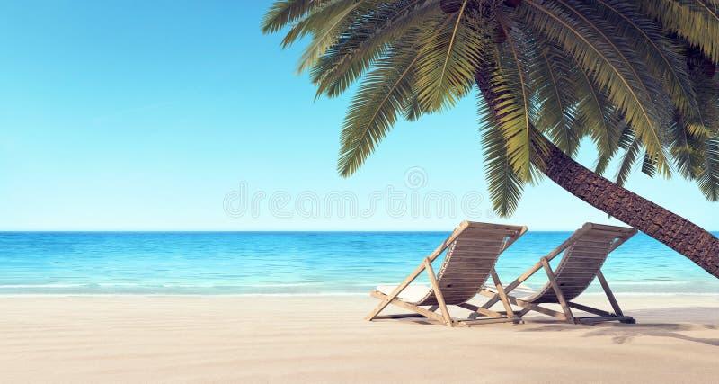 Due sedie sulla spiaggia nell'ambito del fondo di estate della palma immagine stock libera da diritti