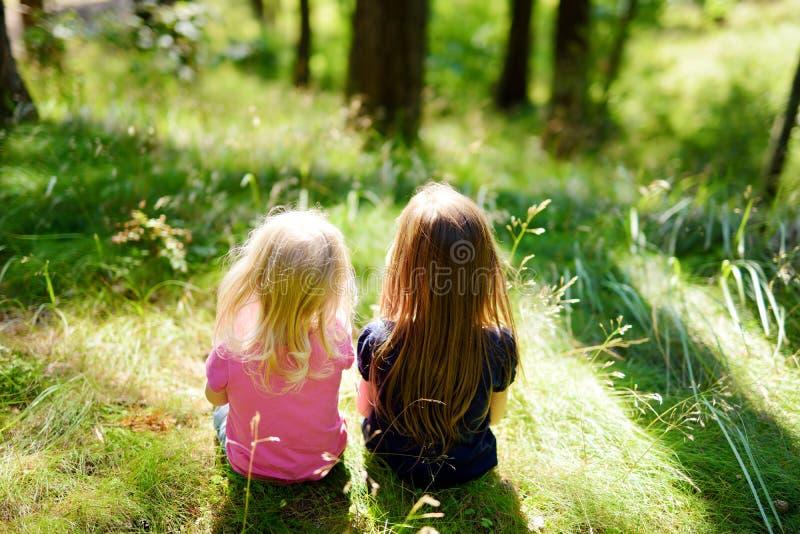 Due sorelline adorabili che fanno un'escursione in una foresta fotografia stock libera da diritti