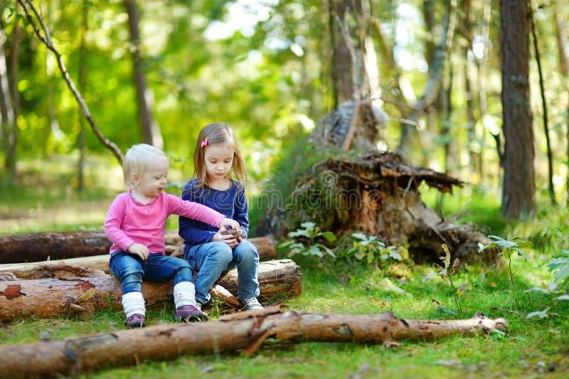 Due sorelline che si siedono su una connessione una foresta immagini stock libere da diritti