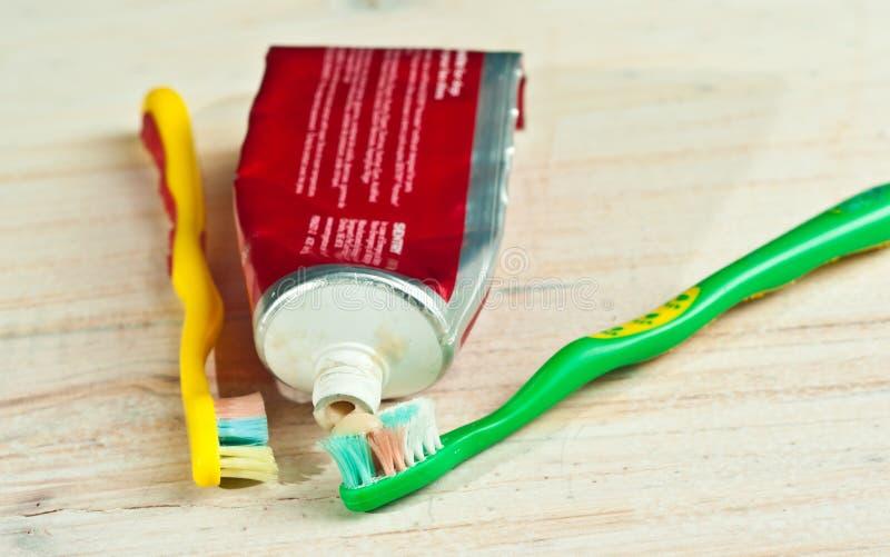 Due spazzolini da denti del cane e tubi della pasta del dente di cane fotografia stock