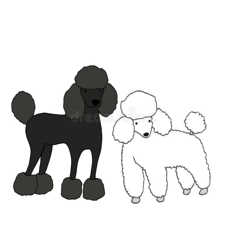 Due svegli, bei cani, l'un nero, in secondo luogo bianco, isolato su w illustrazione di stock