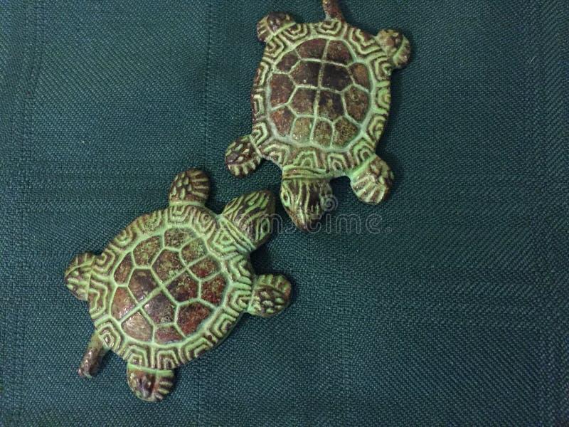 Due tartarughe del metallo che si affrontano immagine stock libera da diritti