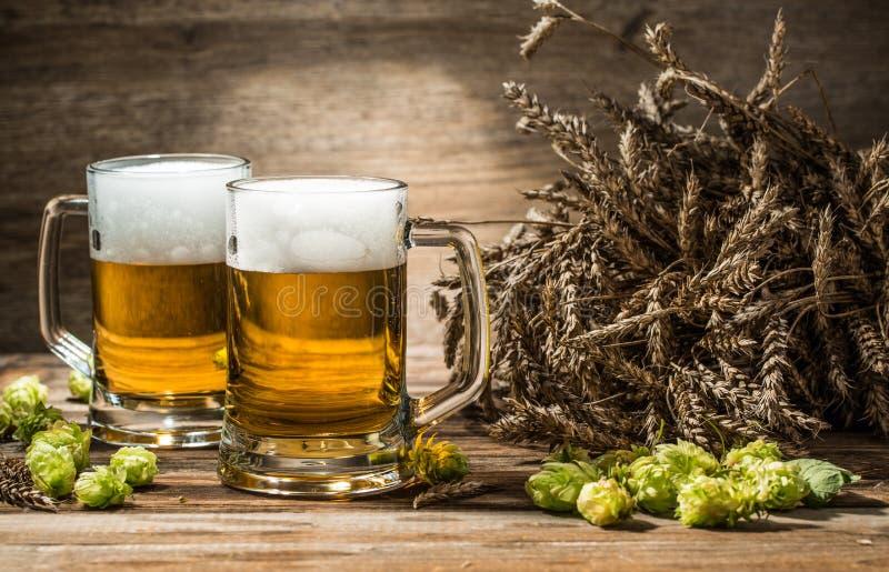 Due tazze di birra sulla tavola con il luppolo ed il grano fotografia stock