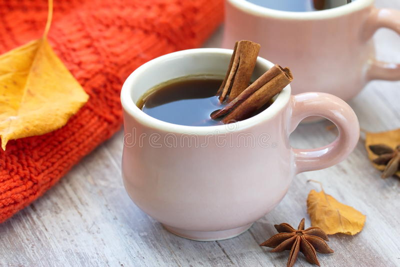 Due tazze di caffè in autunno immagine stock libera da diritti