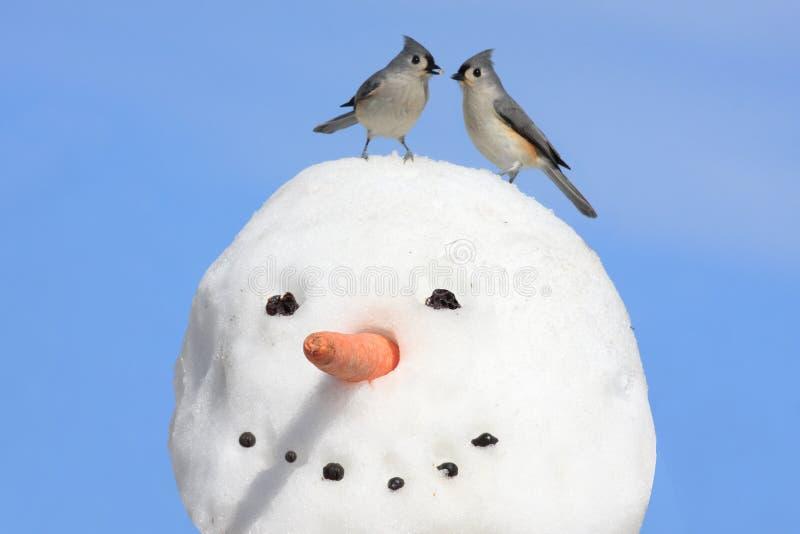 Due uccelli su un pupazzo di neve immagini stock