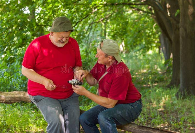 Download Due Vecchi Amici Che Giocano Mini-scacchi Immagine Stock - Immagine di coppie, solo: 56876857