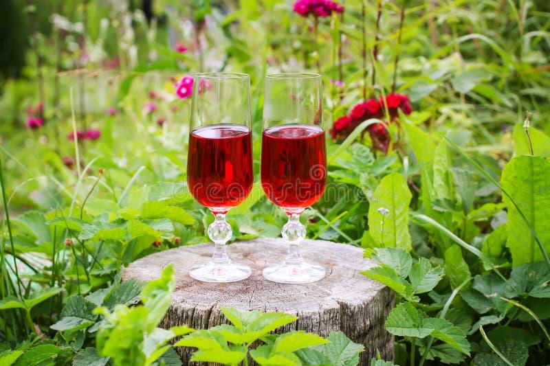 Due vetri con vino casalingo sul ceppo di albero di estate parcheggiano fotografie stock