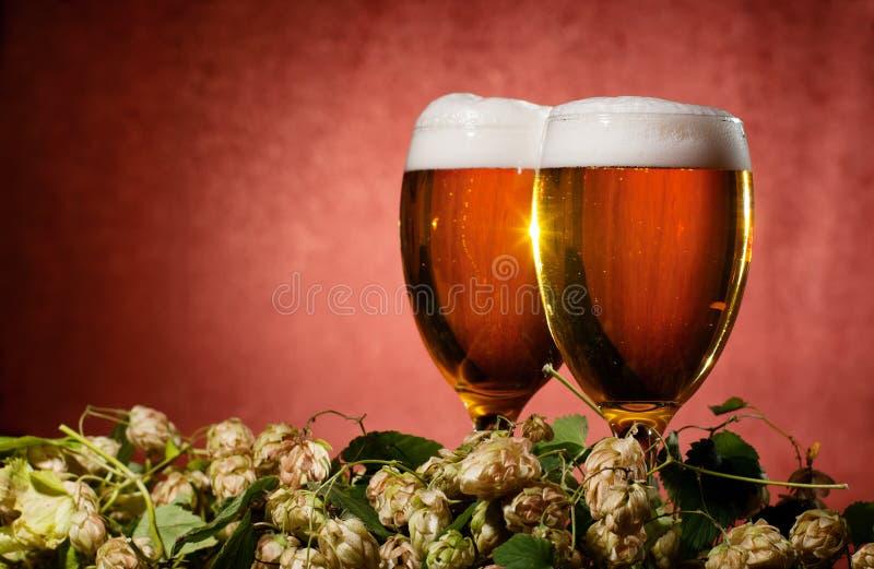 Due vetri di birra con il luppolo immagini stock libere da diritti