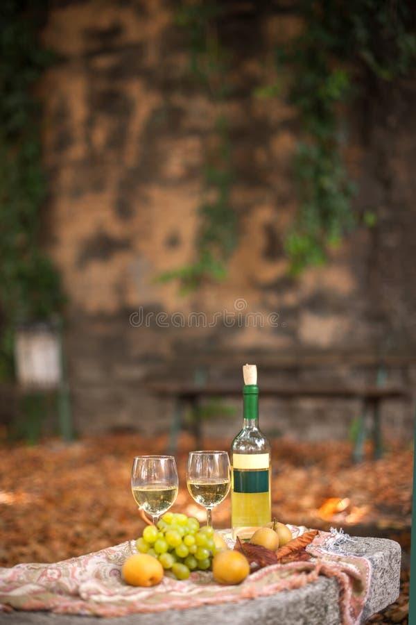 Due vetri di vino bianco e di una bottiglia Uva e l'altra o frkty immagine stock libera da diritti