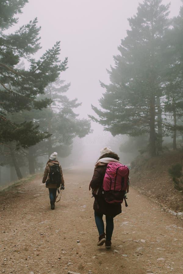 Due viaggiatori con zaino e sacco a pelo scendono un percorso fra gli alberi e la nebbia fotografia stock