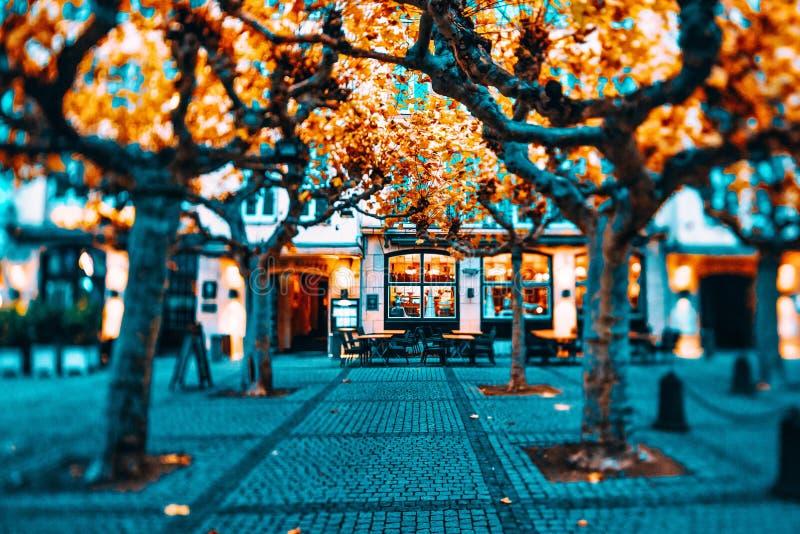 Duesseldorf, Tyskland - 17 november 2019: Den historiska innerstaden påverkas av kontrastfärger och höstkall arkivfoton