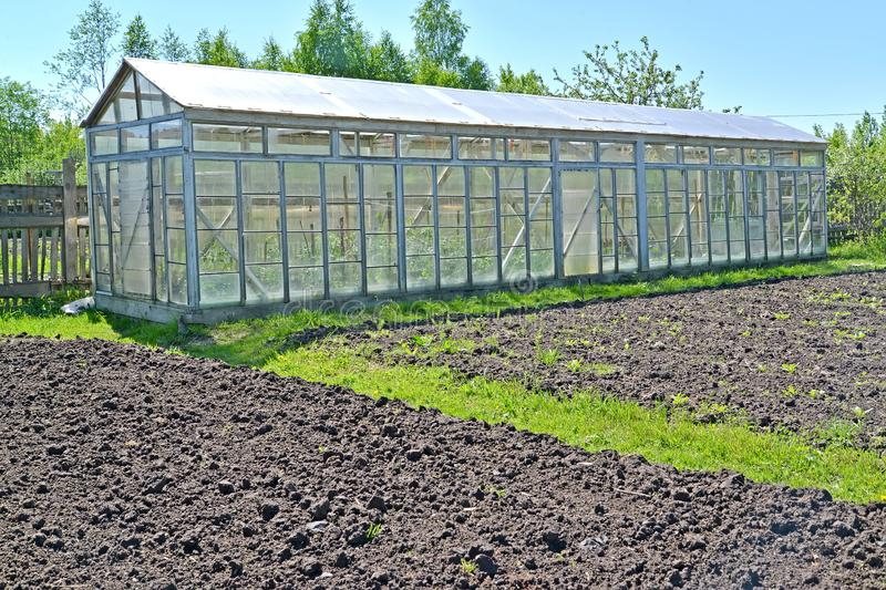 The dug-up beds and the greenhouse from glass frames on the seasonal dacha.  stock images