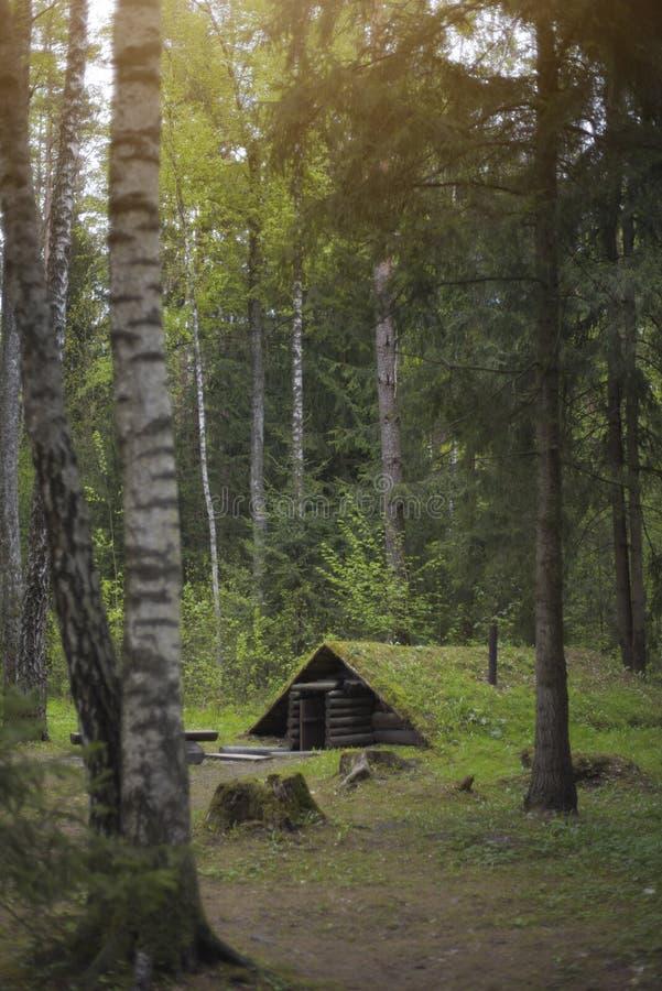 dugout in het bos stock foto