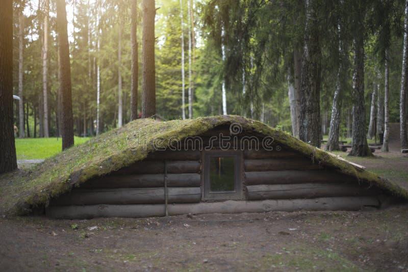 dugout in het bos royalty-vrije stock afbeeldingen