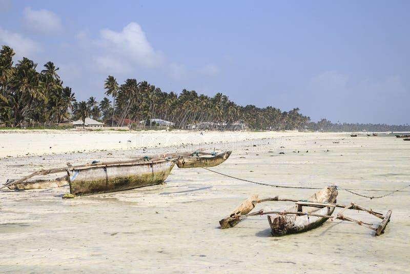 Dugouts på stranden i Zanzibar fotografering för bildbyråer