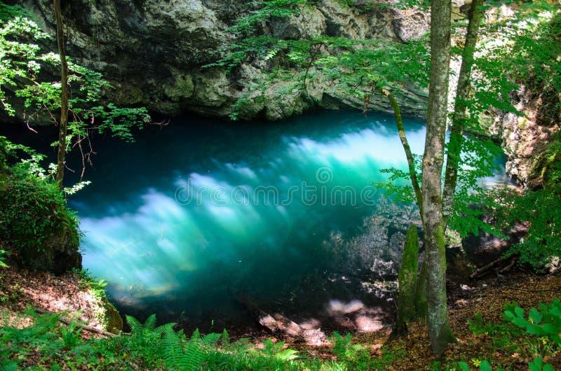Duidelijk blauw water in bos stock afbeeldingen