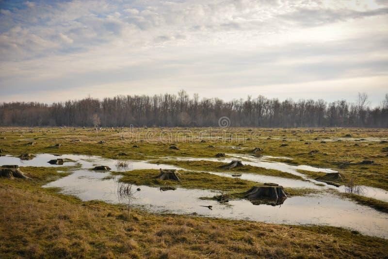 Duidelijk landschap royalty-vrije stock fotografie