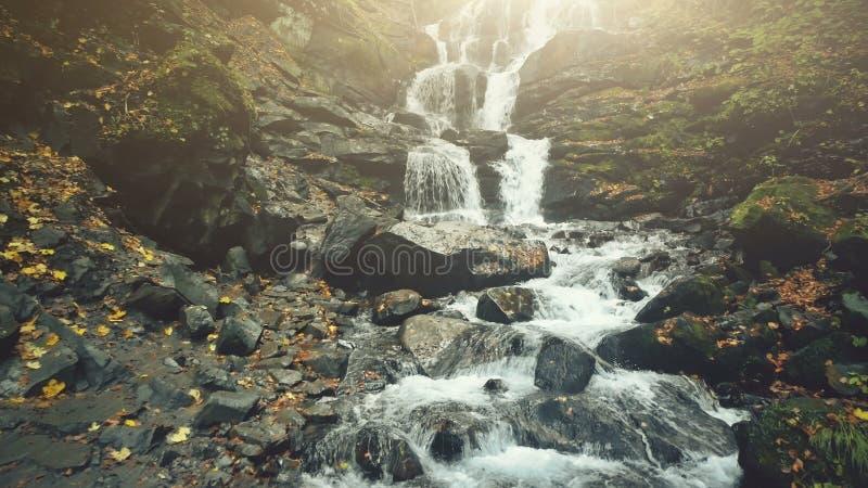 Duidelijk van de het watercascade van de bergstroom de herfstgebladerte royalty-vrije stock afbeelding